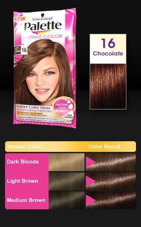 Palette Instant Color 16 Chocolate Brown