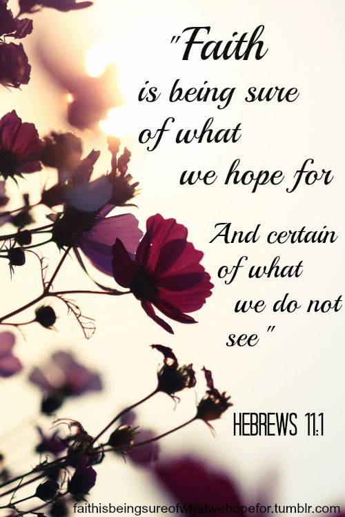 Resultado de imagen para bible verse about hope and faith with flowers
