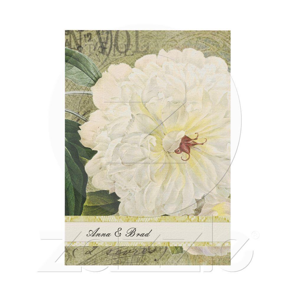 Vintage Botanical White Peony Wedding Invitation | White peonies ...