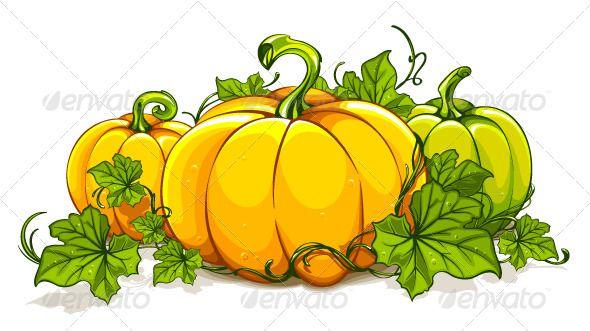 Pumpkin Plant Clipart | How to DRAW strategies | Pinterest ...