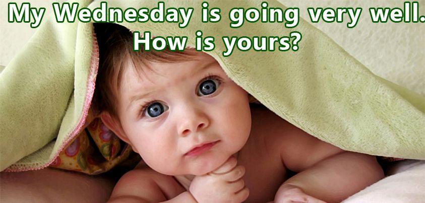It S Wednesday Funny Happy Wednesday Meme With Wednesday Quotes Funny Wednesday Memes Funny Wednesday Quotes Morning Quotes Funny