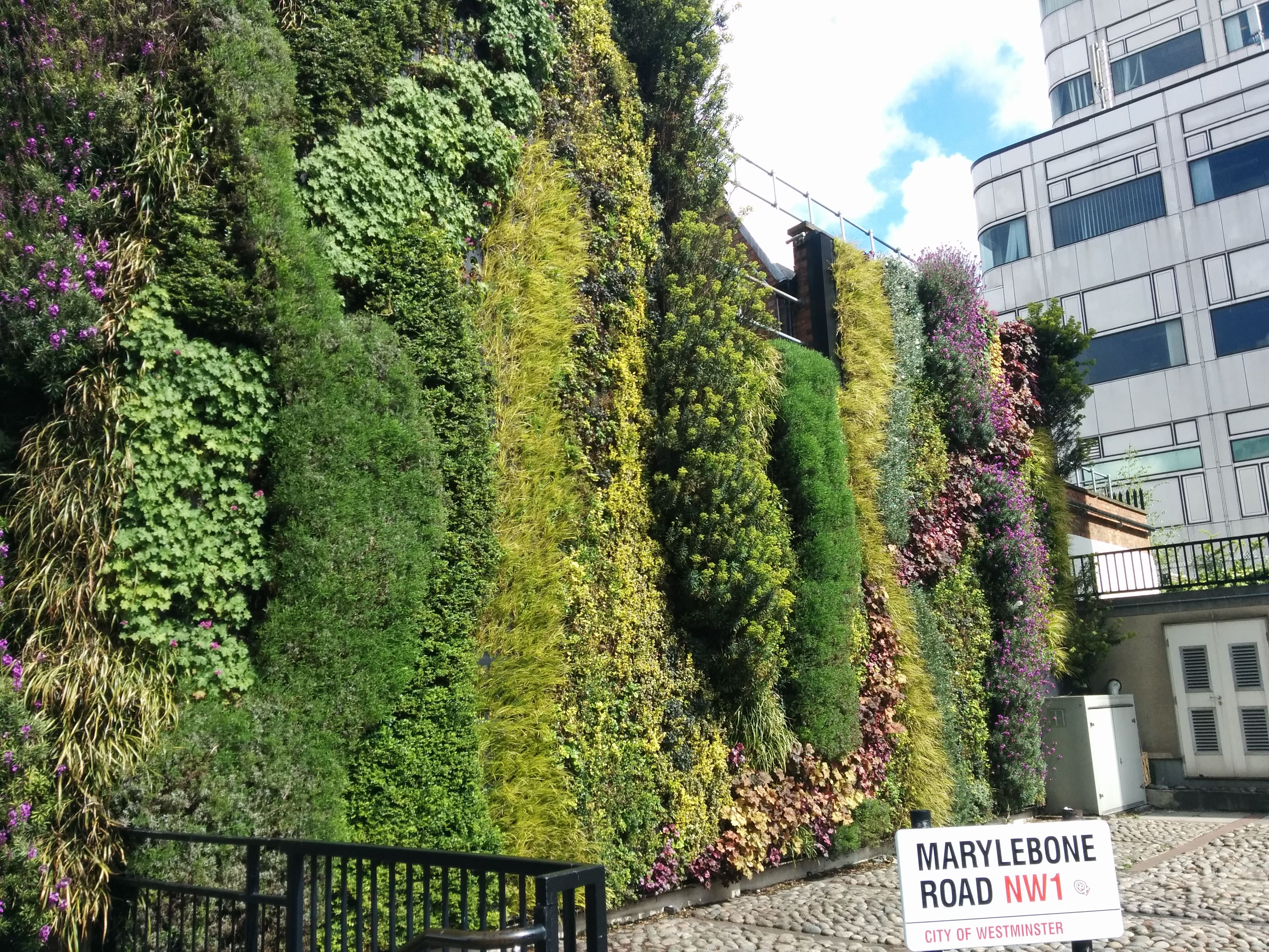 Edgware Road Living Wall blooms on tube station
