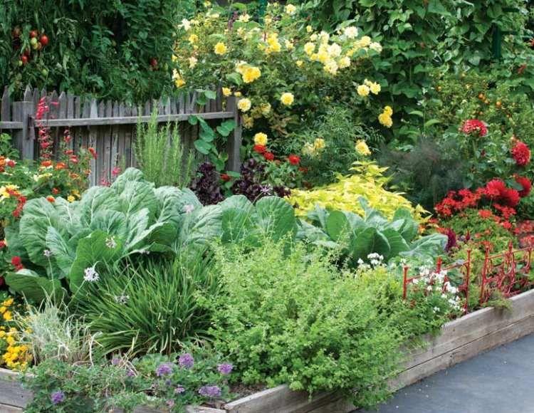 Permakultur Garten- so gestalten Sie Obst- und Gemüsegarten!