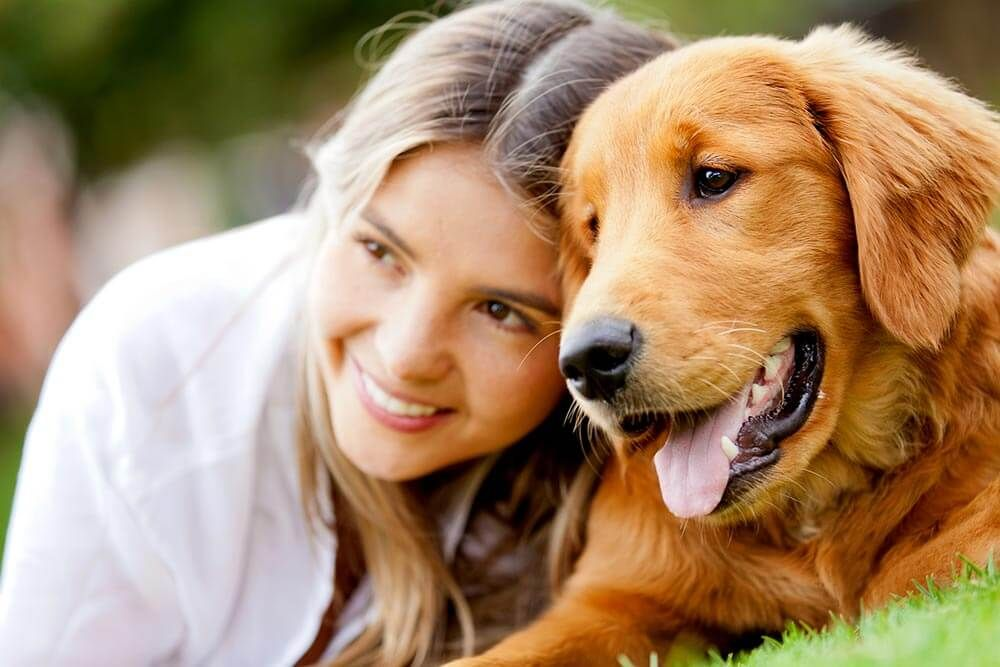 Sales365 Net The Best Deals Every Day Popular Dog Breeds