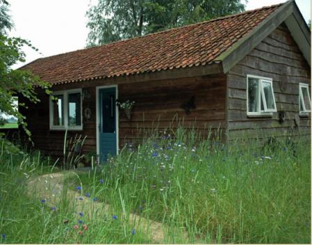 Natuurhuisje 13382 vakantiehuis in Westergeest