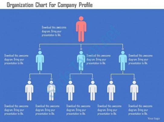 organization chart for company profile flat powerpoint design - company organization chart