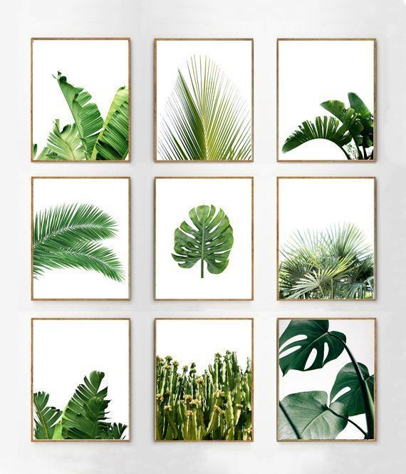 Botanical Prints Set of 9 Tropical Leaves Green Wall art Palms Banana Leaf Monstera Leaf Boho Home Decor Printable Posters Minimalist art
