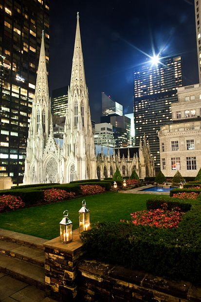 NYC rooftop garden, St. Patrick's Cathedral in the backround