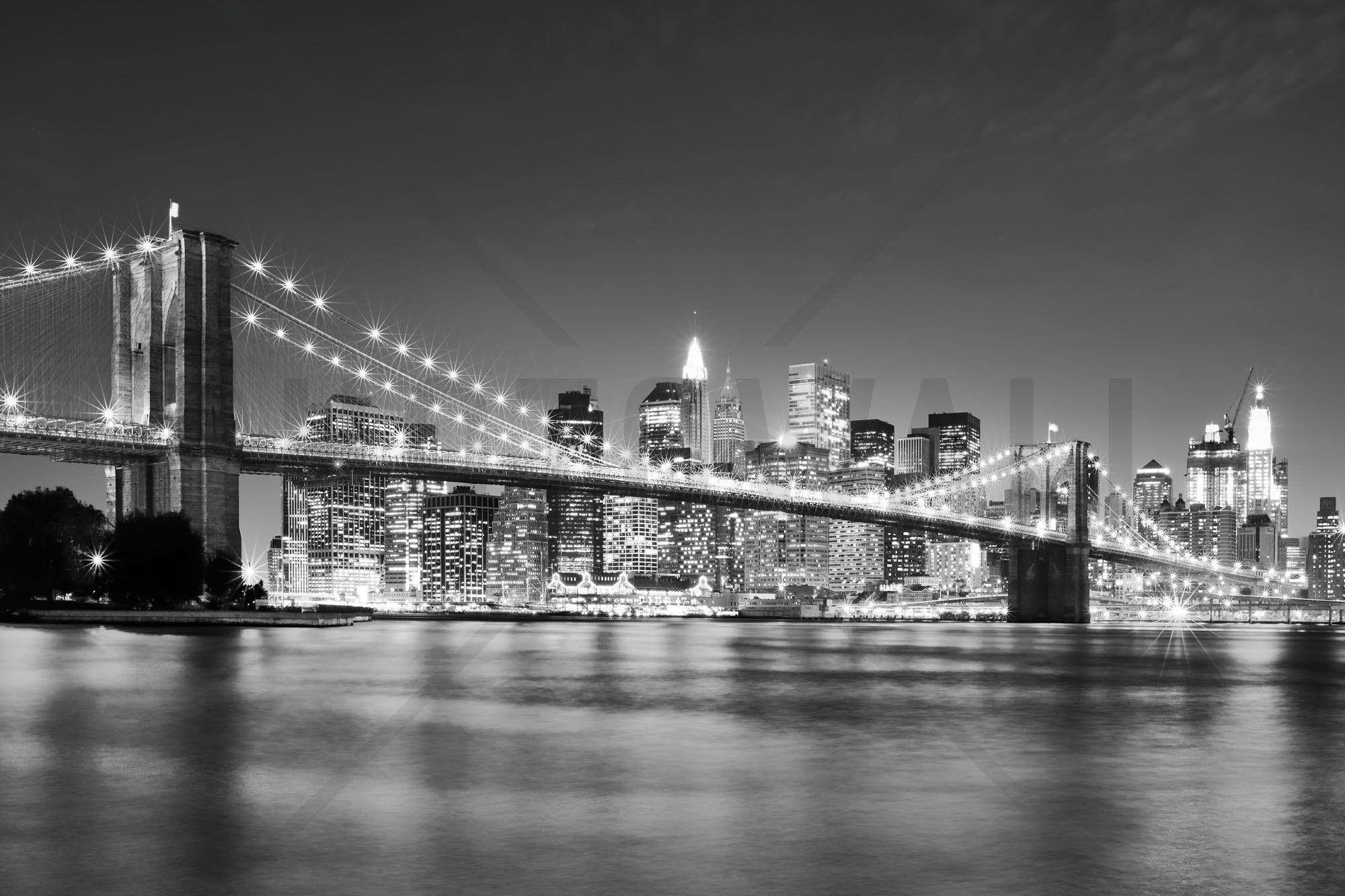 Bright Brooklyn Bridge b/w Wall Mural & Photo
