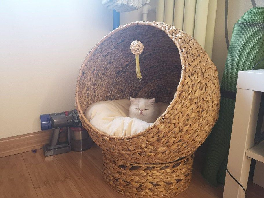 Summer brown ballshaped lifted banana leaf cat house
