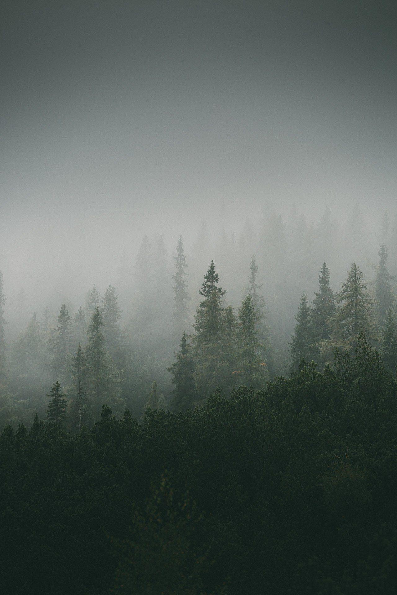 Fotografieren bei schlechtem Wetter: 7 Ideen für