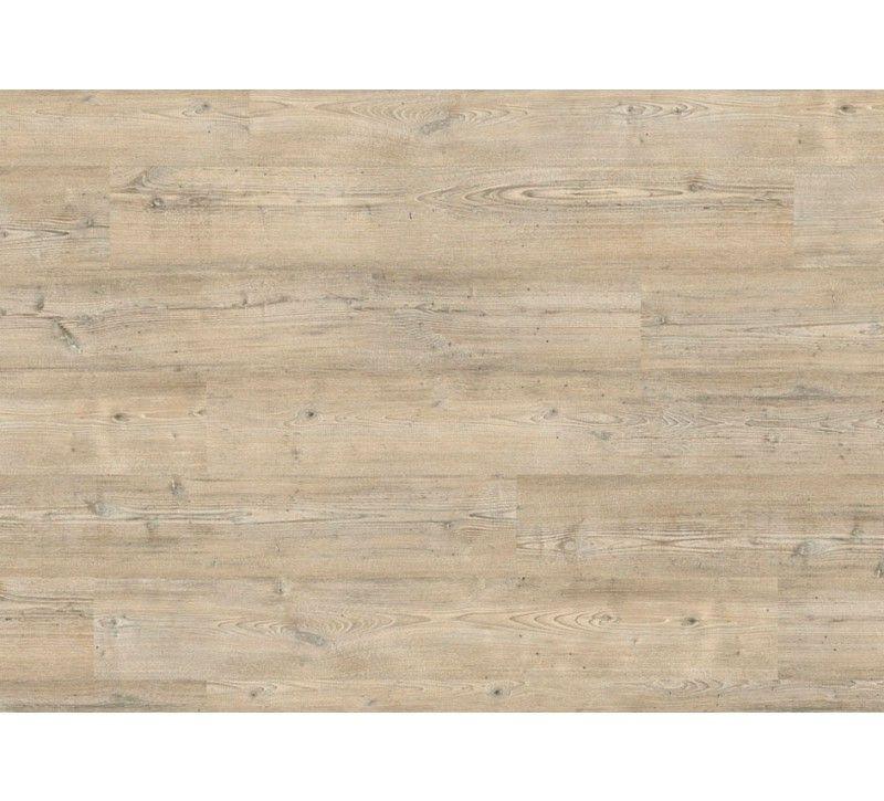 Project Floors Vinylboden - floors@work55 PW 3021-\/55 - Klebevinyl - holz bodenbelag verschiedenen arten