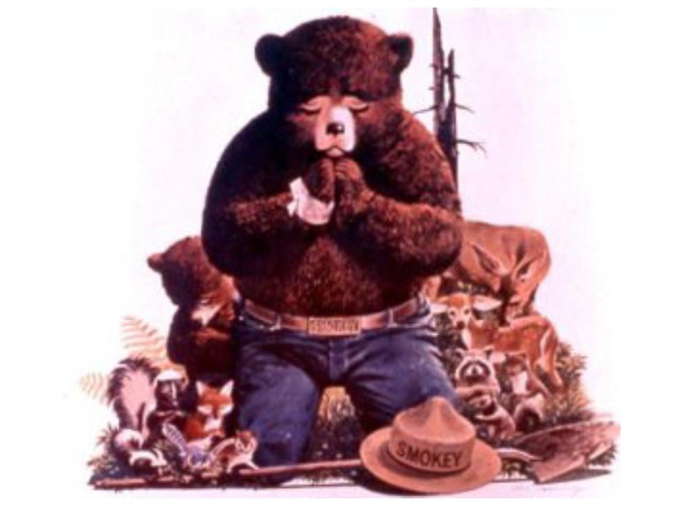 Smokey Bear Smokey Smokey The Bears Css Tutorial