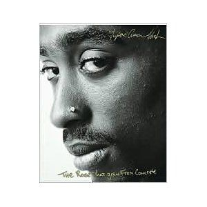 The Rose That Grew From Concrete by Tupac Shakur is a ...