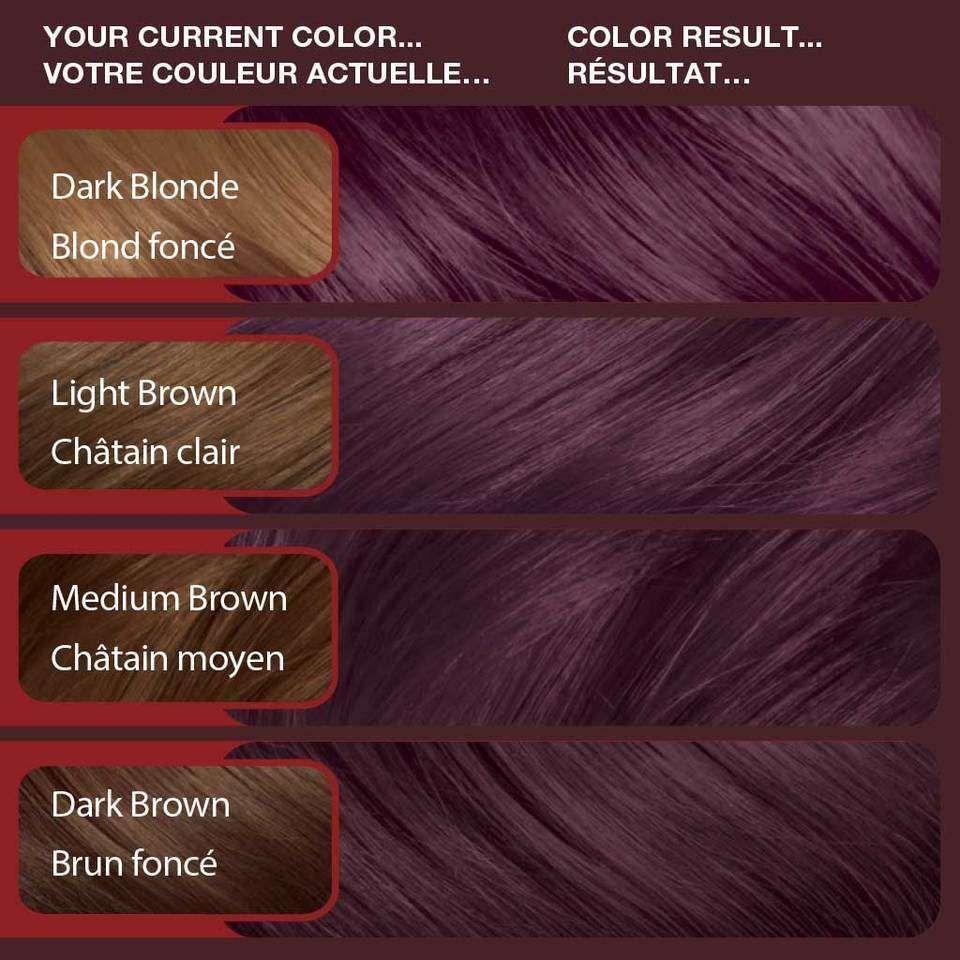 Vidal sassoon deep violet velvet london luxe vr lilac kit also rh pinterest