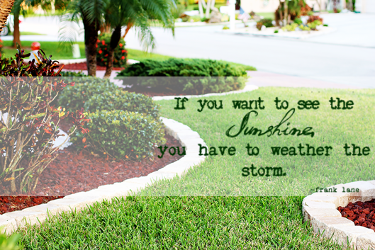 Landscaping Quotes Extraordinary Weather The Storm Quote On Landscaping Image  Pride In Photos