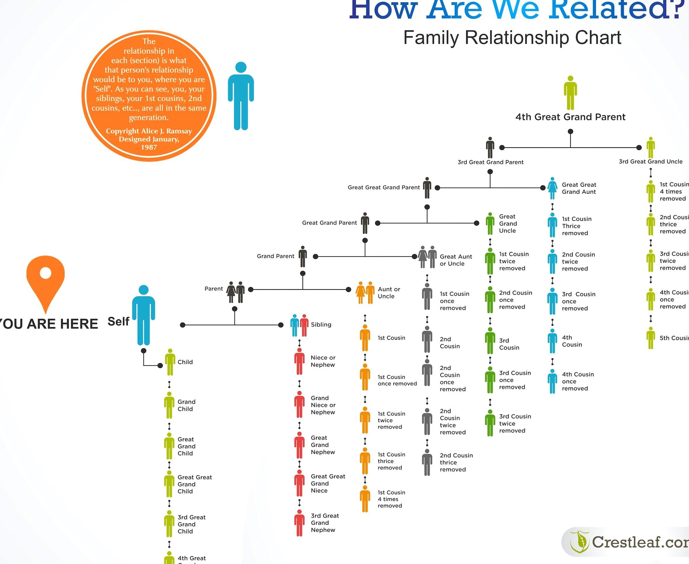 Colorful Family Relationship Chart Helps Answer The Question How Are We Related Family Hist In 2020 Relationship Chart Family Relationship Chart Family Relationships