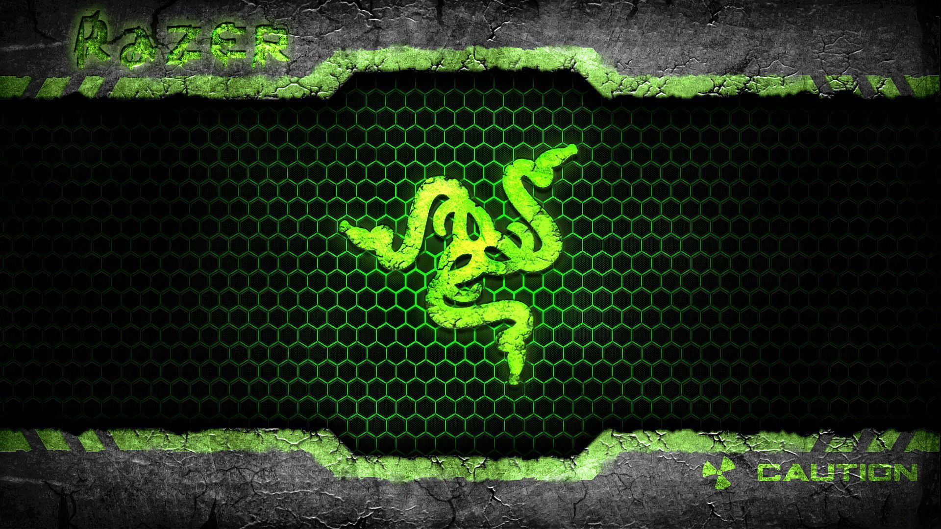 razer logo pictures was taken from other website and it has 1600 x