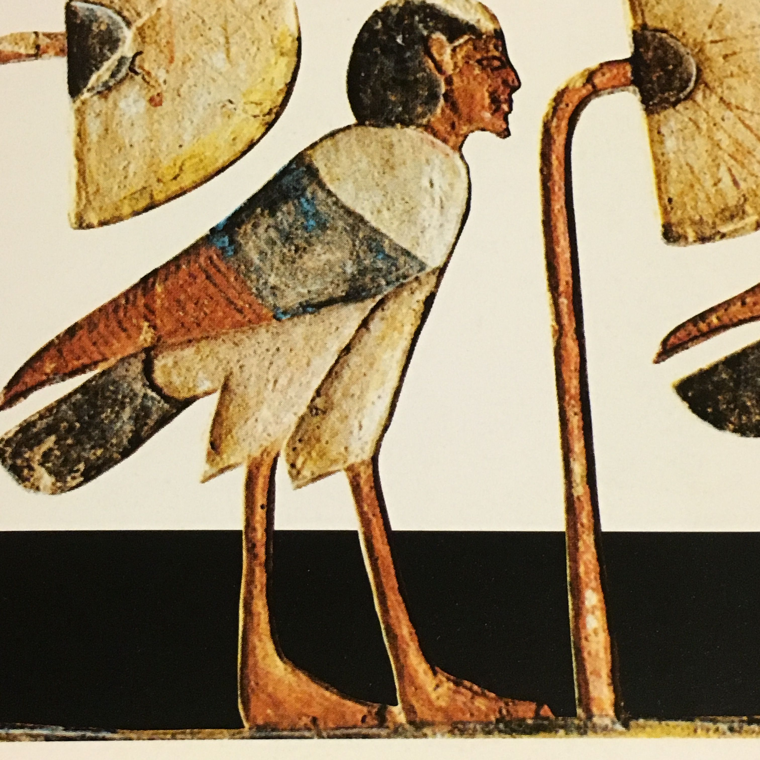 Ba bird of the soul egyptian afterlife ancient sacred egypt ba bird of the soul egyptian afterlife buycottarizona