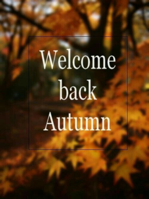 Welcome back autumn | Seasons in 2019 | First day of ...