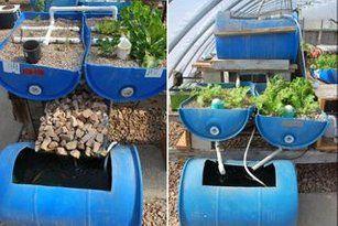 Build a Vertical Aquaponic Veggie & Fish Farm for Small ...