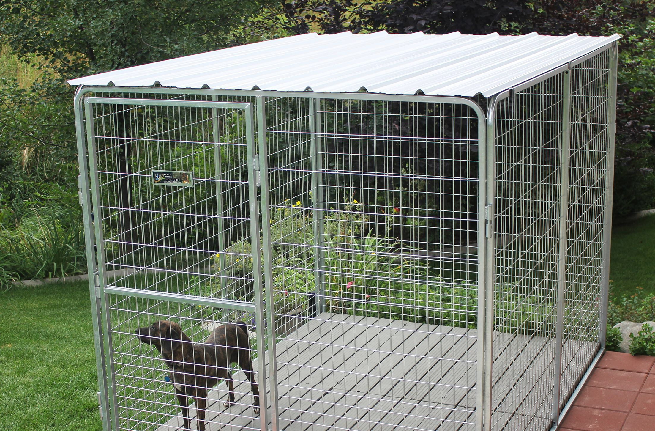 Basic Corrugated Yard Kennel Metal Top Dog Kennel Metal Dog Kennel Dog Kennel Roof