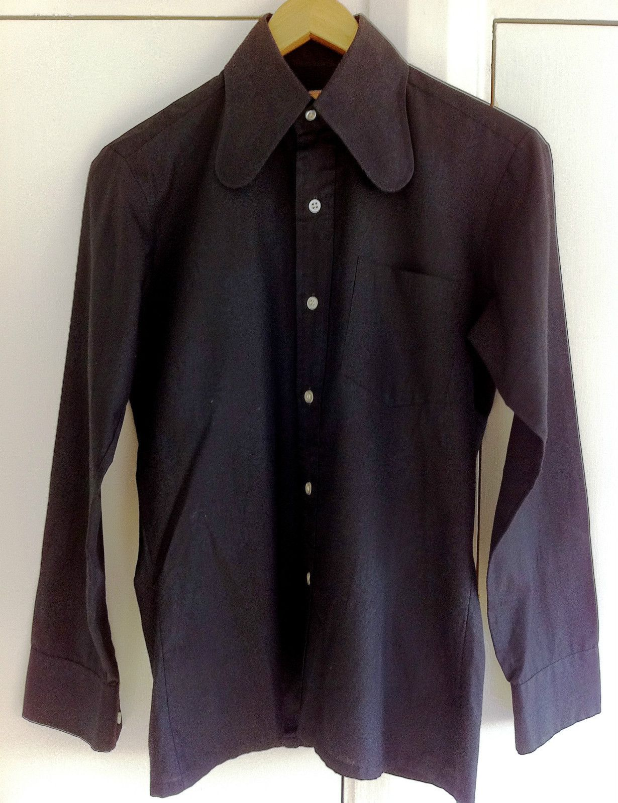 6a6c9a9e68d Why is it so hard to find beagle collared shirts