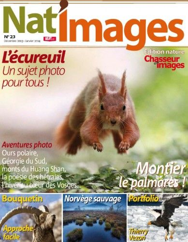Arts Photography Page 9 Pdf Giant Download Magazines For Free Art Photography Photography Art