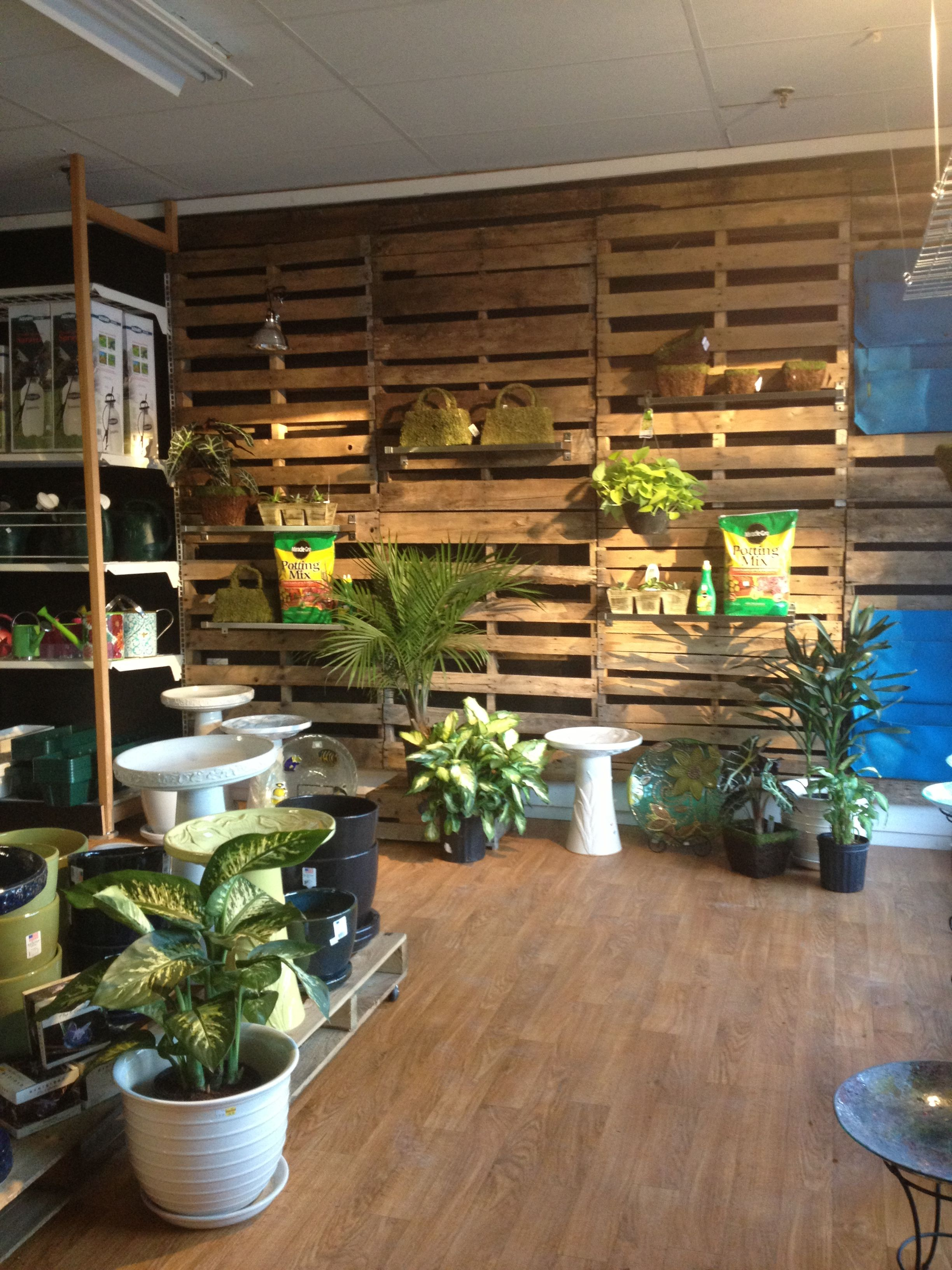 Pallet wall at my garden center pallet projects for Idea center dilshad garden