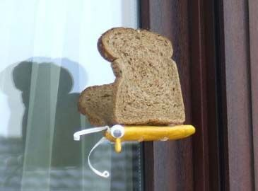 Bread-and-butterfly, made of clay and real slices of bread, that were toasted to make them hard and prevent them from growing moldy.