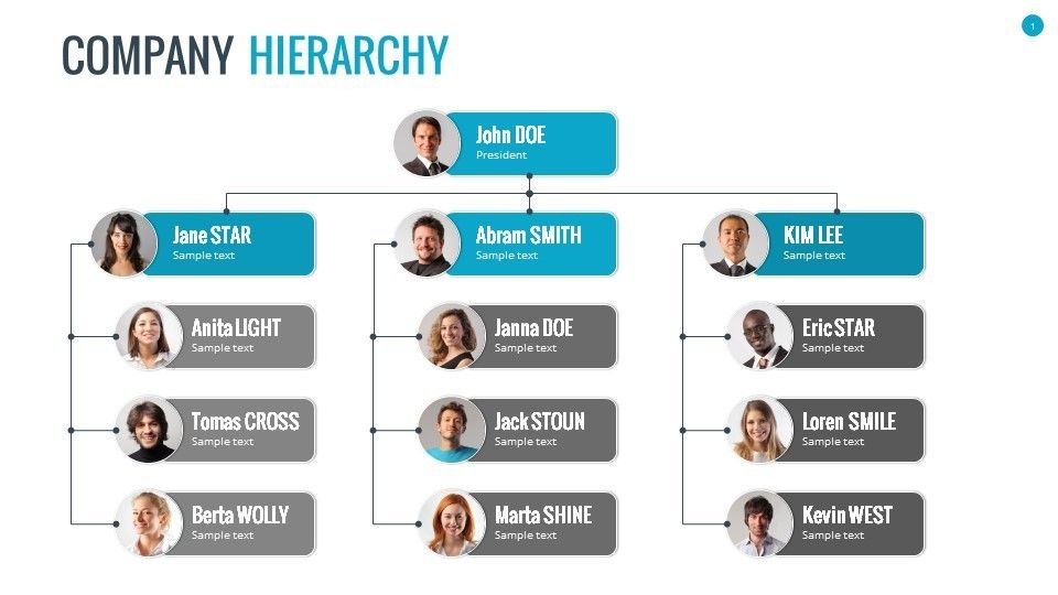 Organizational Chart And Hierarchy Template  Display