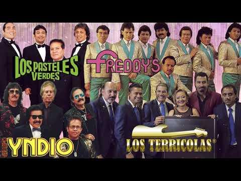 1 Yndio Terricolas Angeles Negros Pasteles Verdes Freddys Y Más Sus Mejores Exitos Youtube Viejitas Pero Buenas Viejitos Canciones Románticas