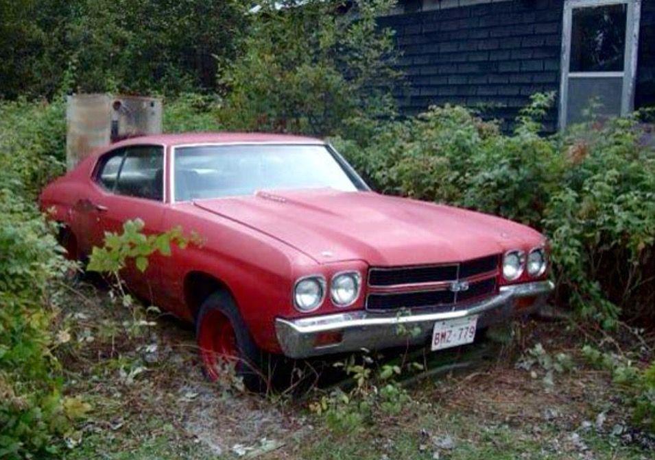 1970 Chevelle Barn Find Cars Junkyard Cars Chevelle Car