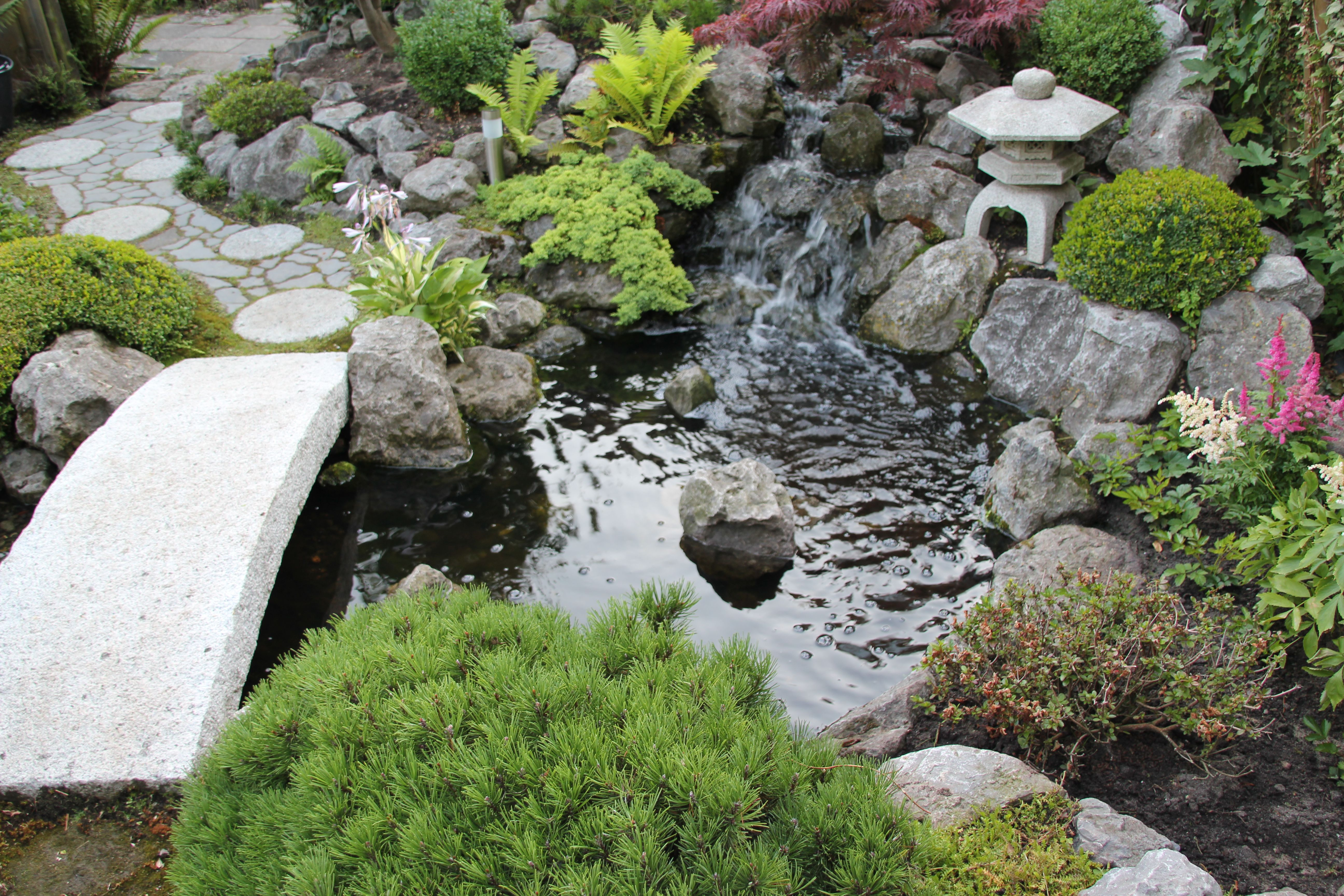Oosterse Tuin Met Typerende Loopbrug Over Een Robuuste Vijver