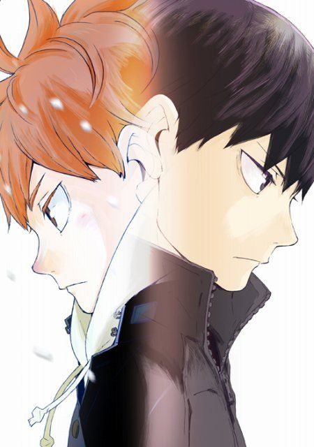 Photo of Haikyu !! will receive a new anime series
