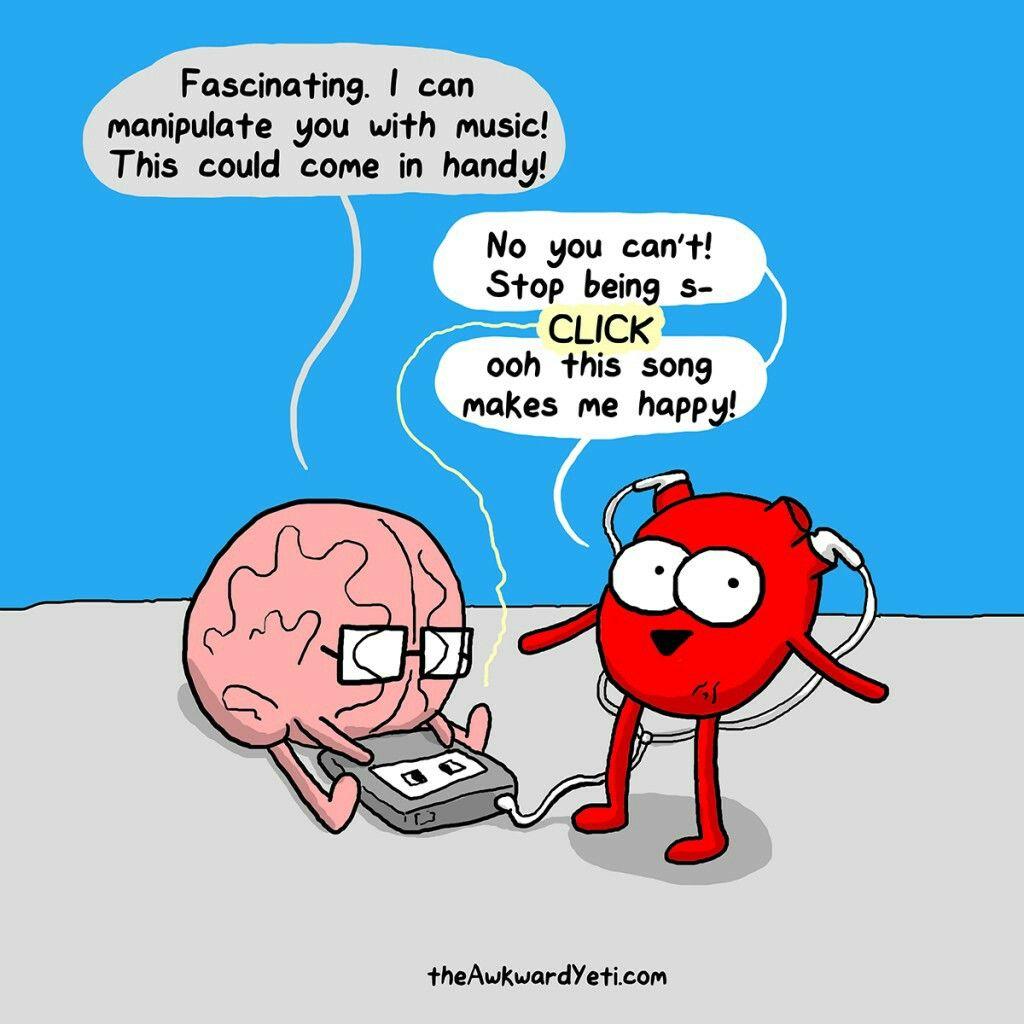 humor på hjernen