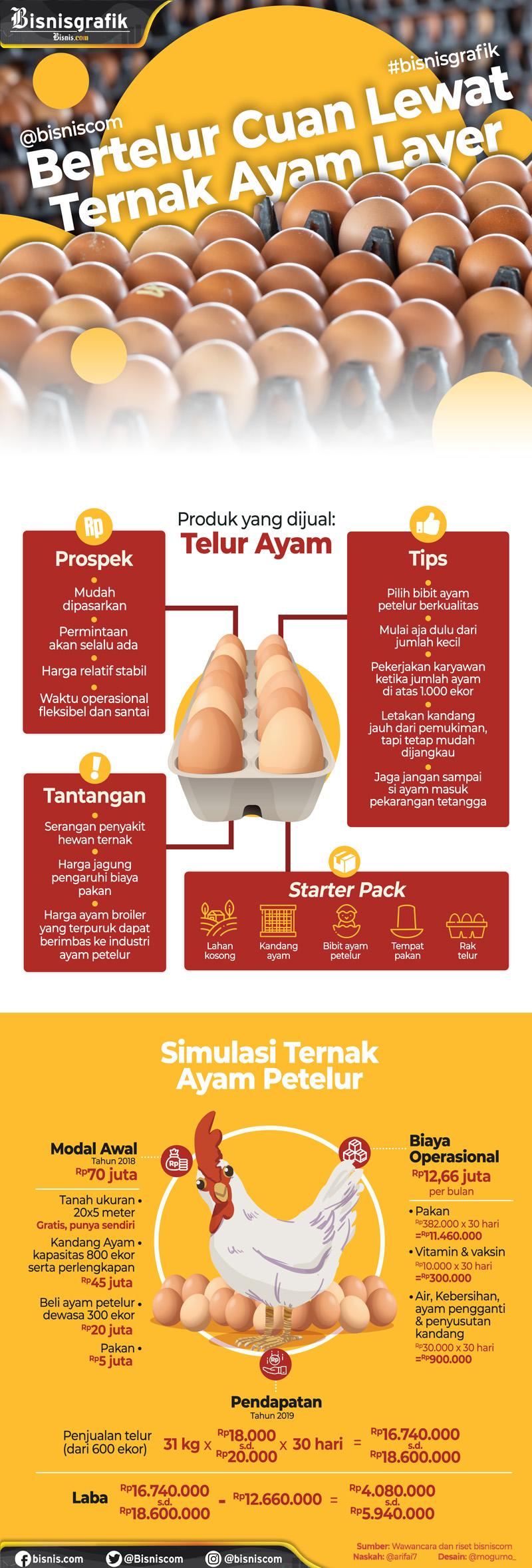 Harga Pakan Ayam Petelur - Pabeas Foods