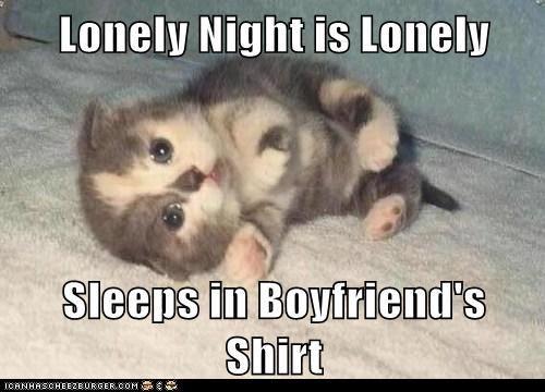 Funny Meme For Sad : Sad cat by marcoa meme center