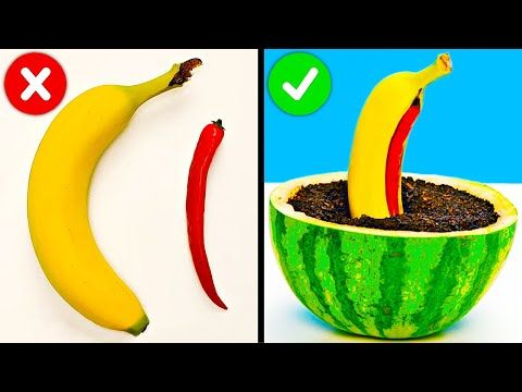 How To Regrow Everything || Plant Hacks To Grow Yo