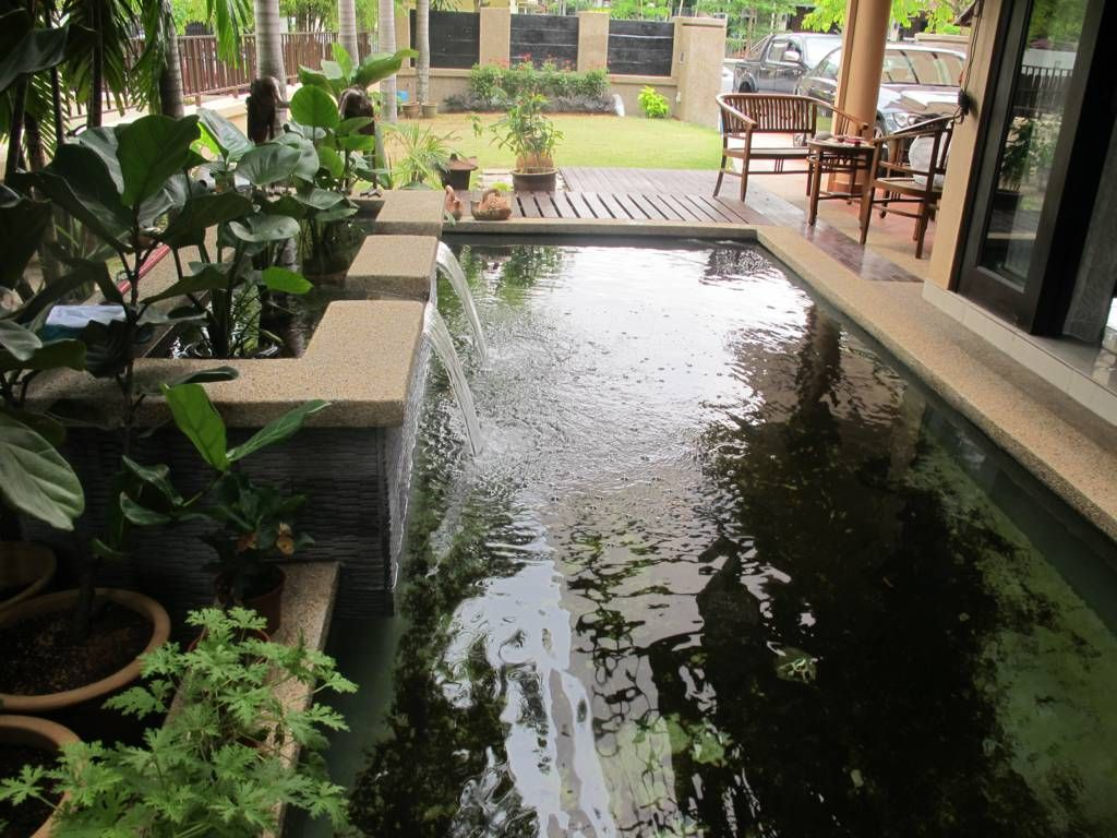 Design ideas indoor fish pond design with indoor garden for Patio koi pond