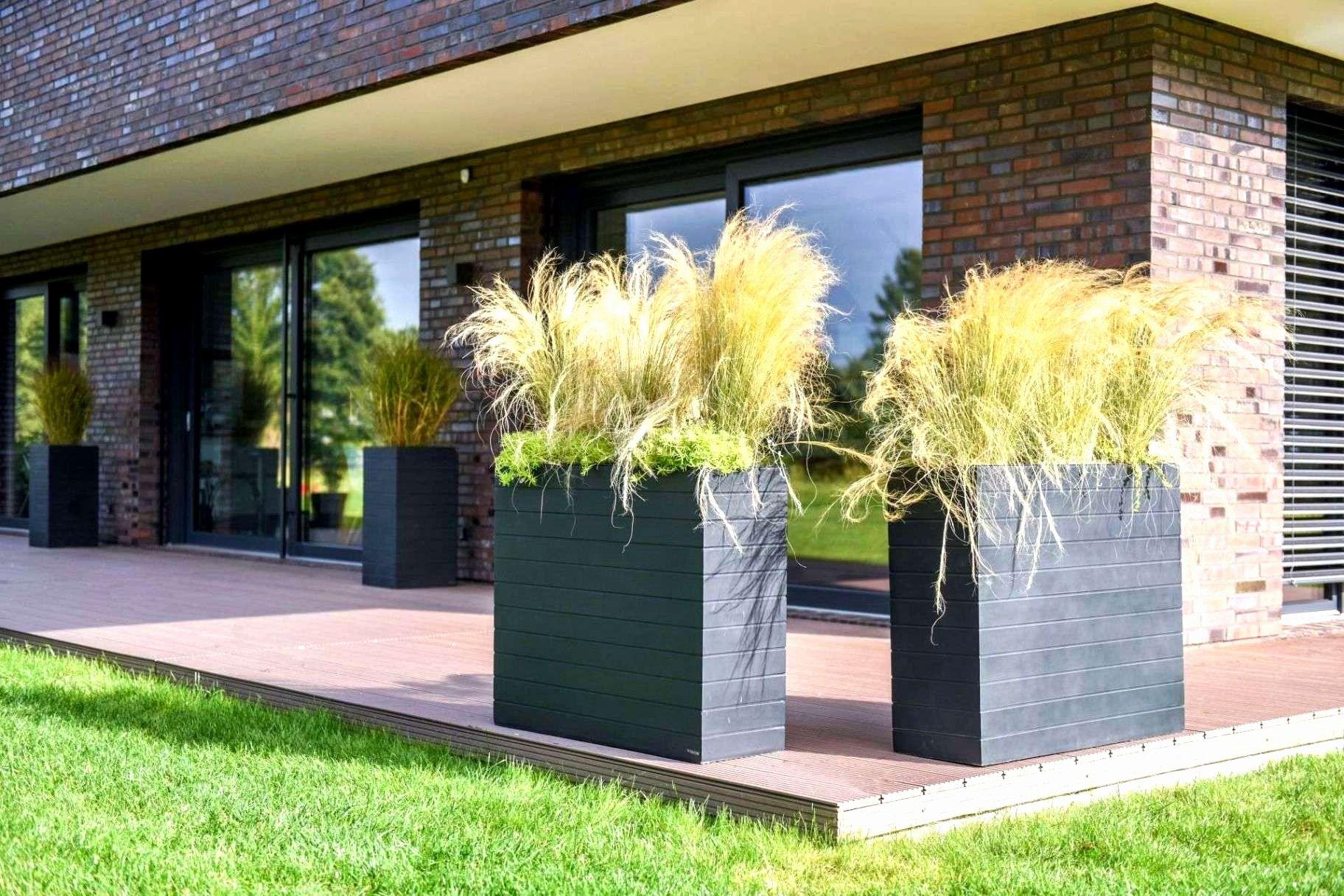 Ideen 45 Fur Sichtschutz Ohne Bohren Terrasse Sichtschutz