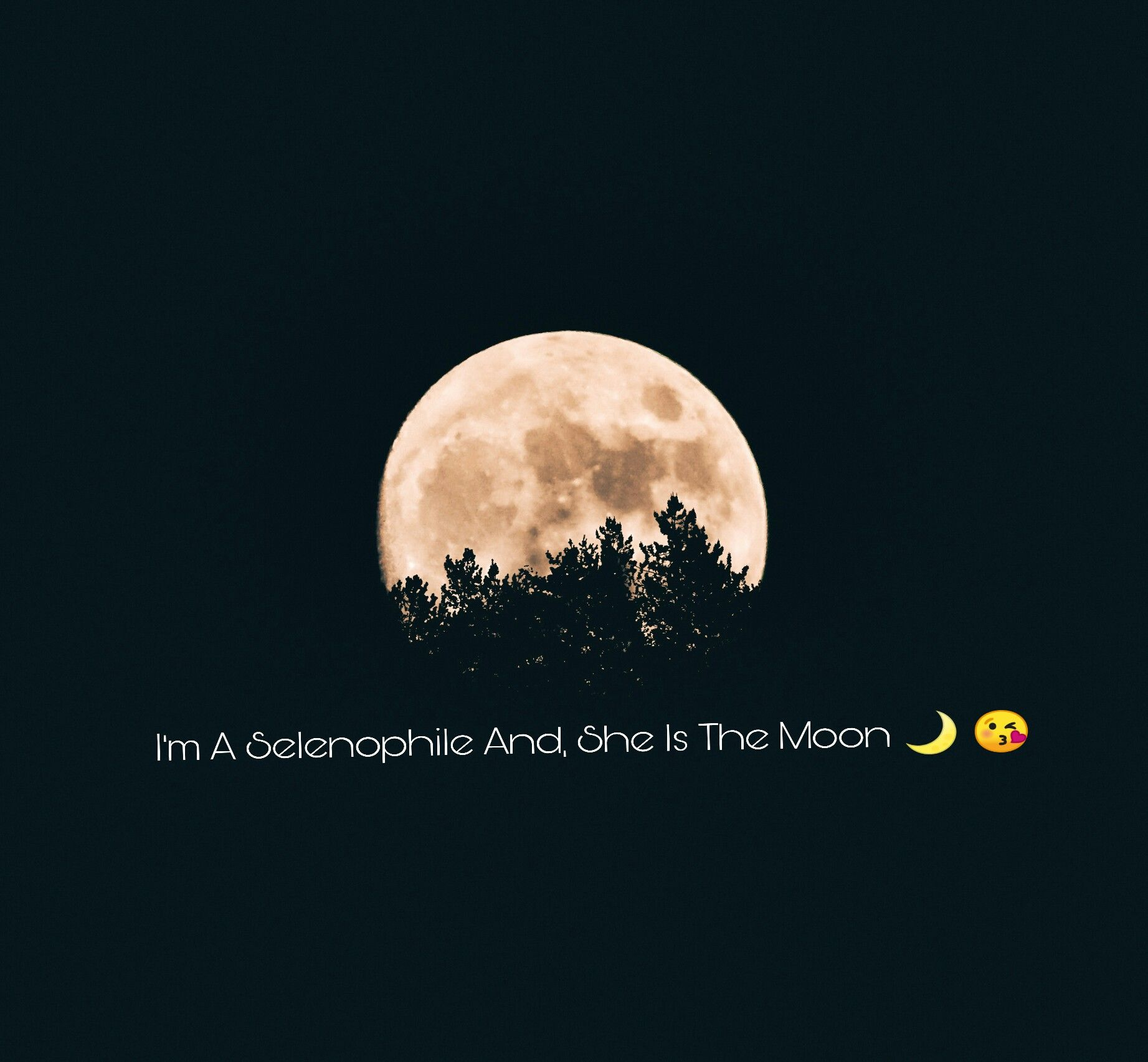 Selenophile A Moon Lover I M A Selenophile And She Is The Moon The Peerless Page Follow Us Moon Lovers Quotes Moon Quotes Quotes About Photography