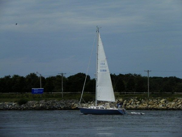 """""""In Sail"""" by J.S. Petralito Oct 2, 2012 Cape Cod Canal (C)"""