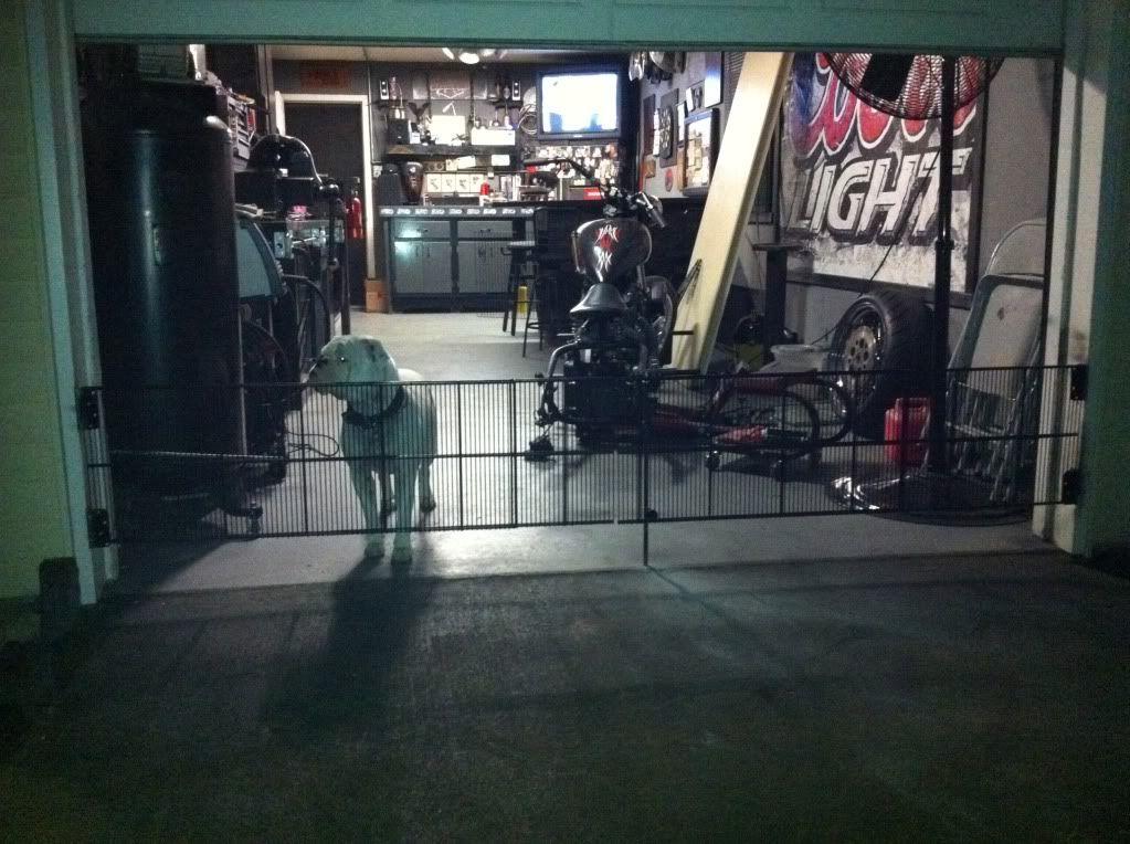 Dog Gate For Garage Door Goldenacresdogs