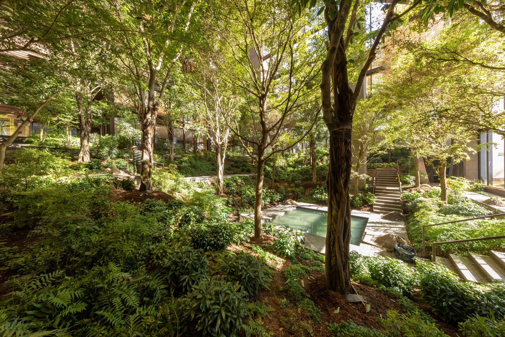 Landscape Architecture In The Ford Foundation Atrium New York