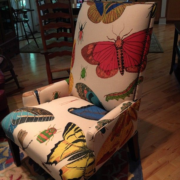 Bug & butterfly chair, what great colors.  Makes me laugh!
