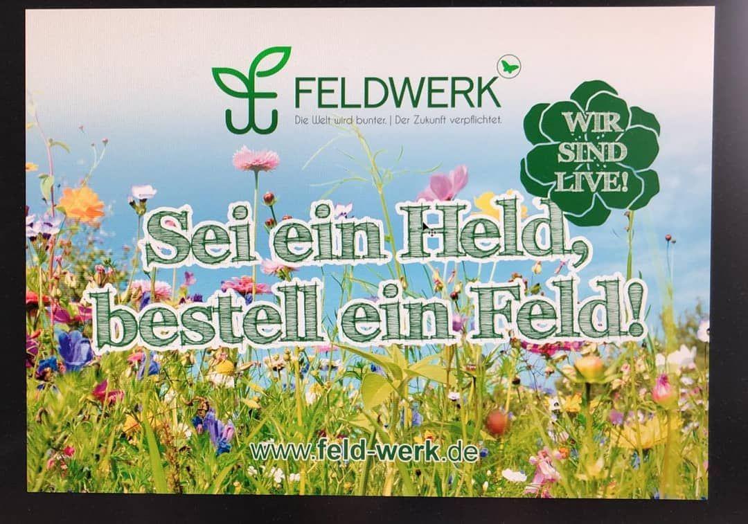 Feldwerk Wirsindonline Bluhpatenschaften Naturschutz Insektenschutz Seieinheldbestelleinfeld In 2020