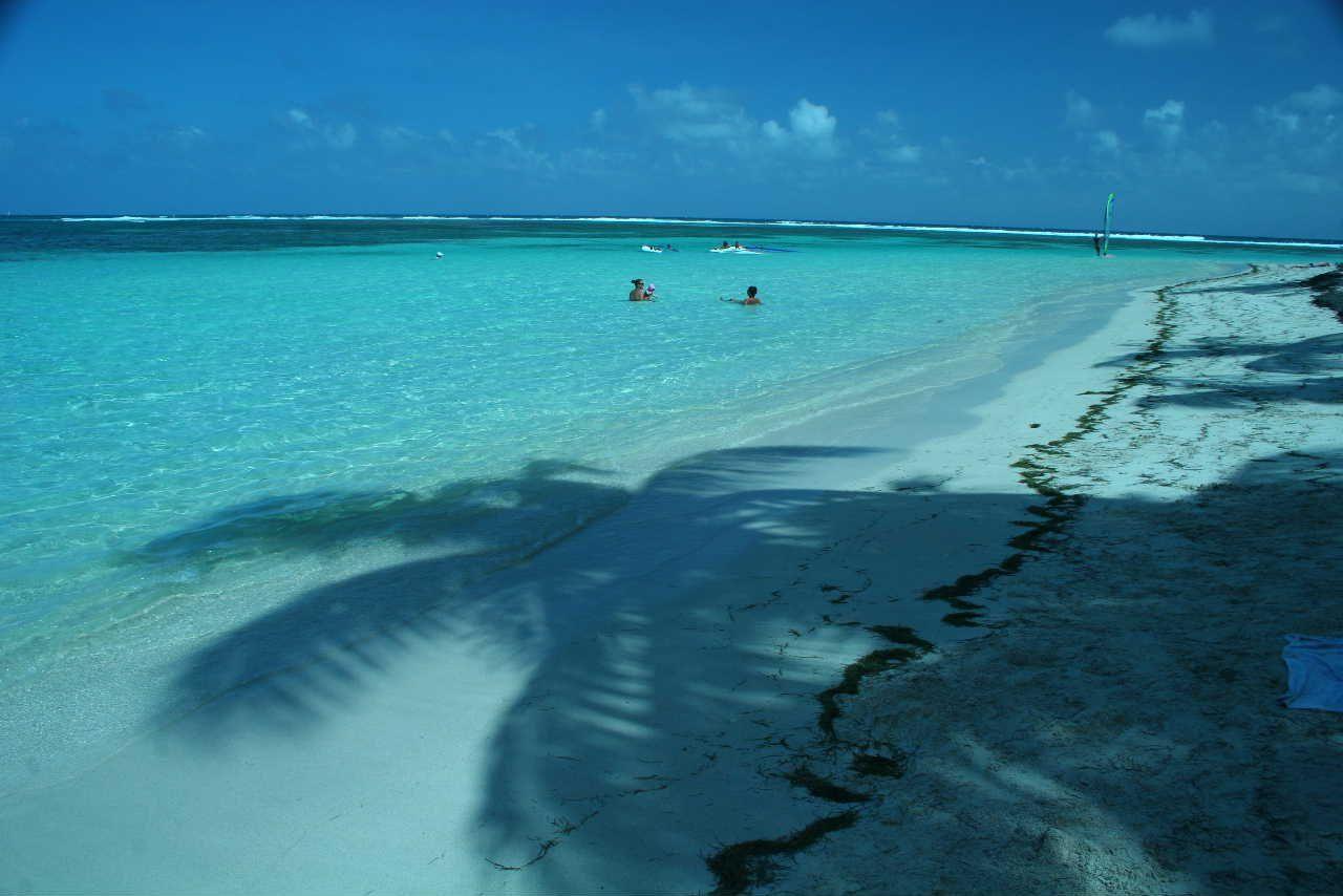 #Guadeloupe Plage de sable blanc