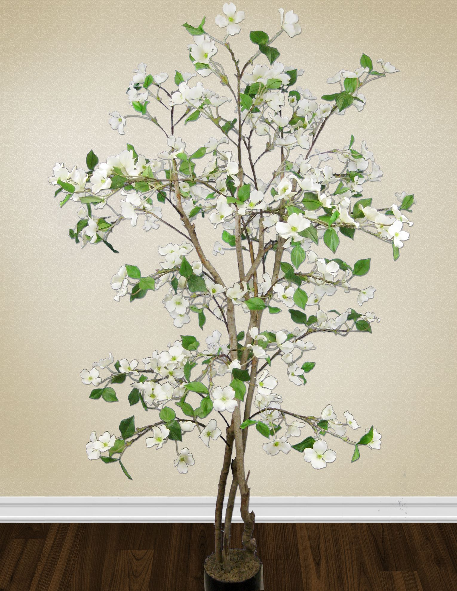 Celebrate spring with a gorgeous flowering tree such as this
