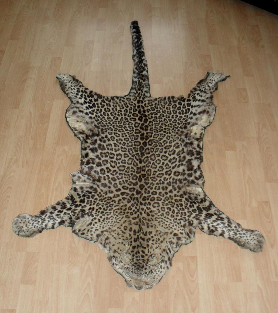 Real Leopard Skin Rug Rugs Ideas